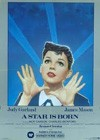A Star Is Born (1954)2.jpg