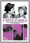 Taste of Honey (A)