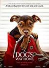 A-Dogs-Way-Home.jpg