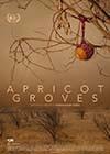 Apricot-Groves.jpg