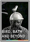 Bird, Bath and Beyond