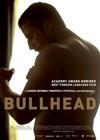 Bullhead6.jpg