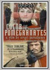 Color of Pomegranates