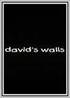 David's Walls