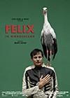 Felix-in-Wonderland.jpg