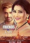 Friends-In-Law.jpg