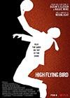 High-Flying-Bird.jpg