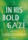 In-His-Bold-Gaze.jpg