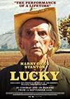 Lucky2.jpg