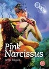 Pink Narcissus (1971).jpg