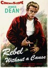 Rebel Without A Cause (1955)2.jpg