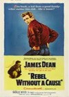 Rebel Without A Cause (1955)6.jpg