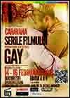 Serile-Filmului-Gay-2013.jpg