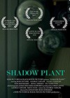 Shadow-Plant.jpg