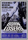 Born Losers (The)