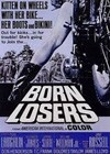 The Born Losers (1967)3.jpg