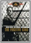 Fugitive Kind (The)