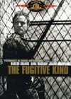 The Fugitive Kind (1959).jpg