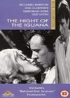 The Night Of The Iguana (1964)4.jpg
