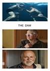 The-Dam-2016.jpg