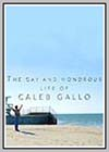 Gay and Wondrous Life of Caleb Gallo (The)