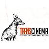 Transcinema Festival Internacional de Cine