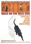 Walk On The Wild Side (1962).jpg