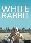 White-Rabbit.jpg